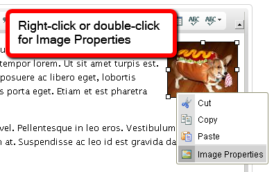 Right-click or double-click to change Image Properties